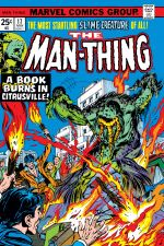 Man-Thing (1974) #17 cover