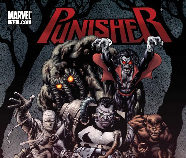 PUNISHER (2008) #12