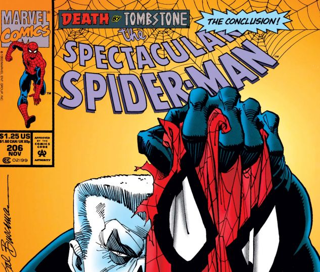 Cover for PETER PARKER, THE SPECTACULAR SPIDER-MAN 206