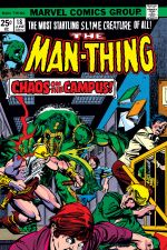 Man-Thing (1974) #18 cover