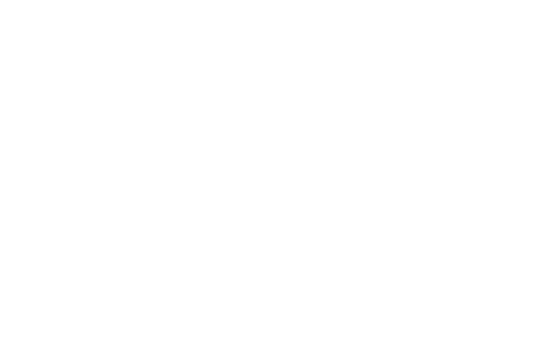 STAN LEE MEETS SILVER (2006)
