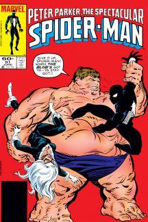 Peter Parker, the Spectacular Spider-Man (1976) #91