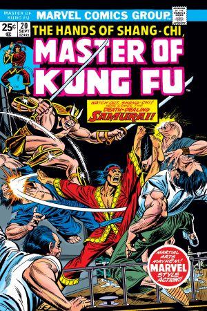 Master of Kung Fu (1974) #20