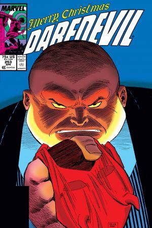 Daredevil (1964) #253