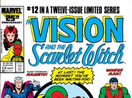 Vision and the Scarlet Witch, The #12