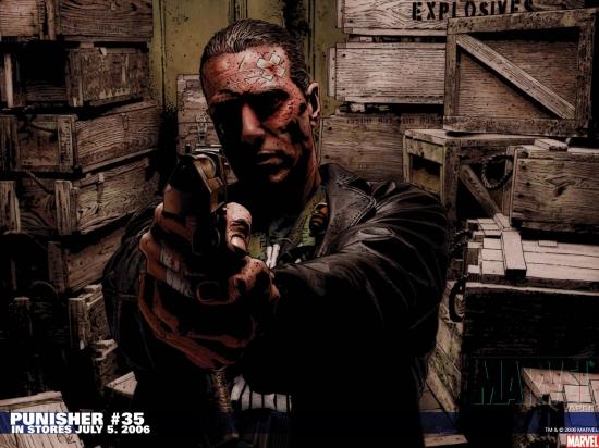 Punisher (2001) #35 Wallpaper