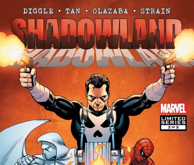 Shadowland (2010) #3