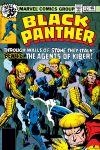 Black Panther (1977) #12