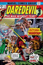 Daredevil (1964) #117 cover