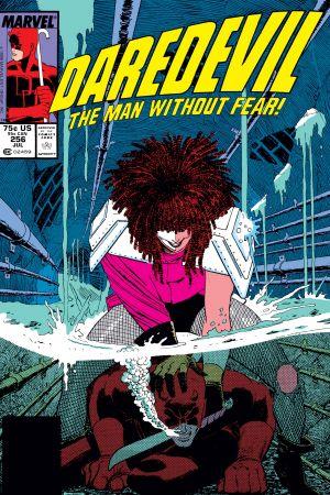 Daredevil (1964) #256
