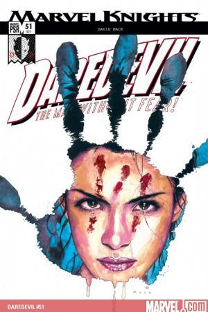Daredevil Vol. 8: Echo – Vision Quest (2004)