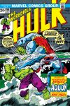 Incredible Hulk (1962) #165 Cover