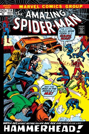 The Amazing Spider-Man (1963) #114