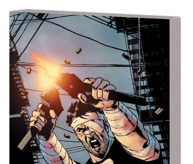 The Punisher by Greg Rucka Vol. 2 TPB