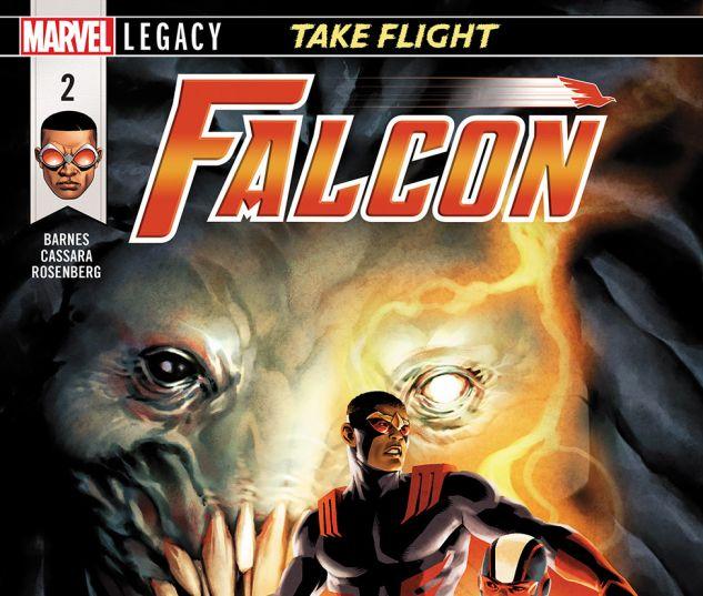 FALCON2017002_DC11