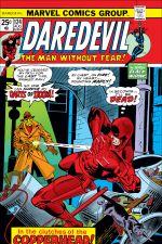 Daredevil (1964) #124 cover
