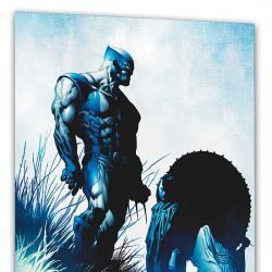Wolverine: Origins & Endings (Trade Paperback)