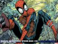 Marvel Adventures Spider-Man (2005) #30 Wallpaper