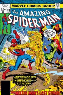 The Amazing Spider-Man (1963) #173