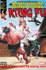 Deadly Hands of Kung Fu (1974) #12 cover