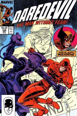 Daredevil (1964) #248