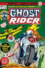 Ghost Rider (1973) #12 cover
