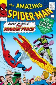 The Amazing Spider-Man (1963) #17