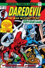 Daredevil (1964) #127 cover