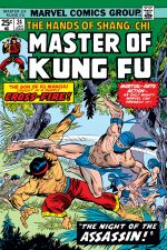 Master of Kung Fu (1974) #24 cover