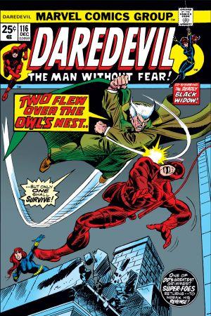 Daredevil (1964) #116