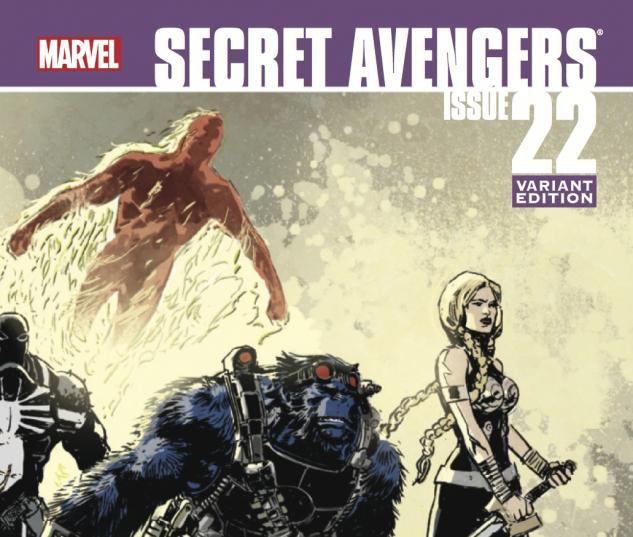 Secret Avengers #22 - Variant