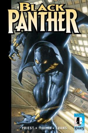 Black Panther Vol. I: The Client (Trade Paperback)