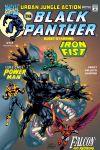 Black Panther (1998) #17