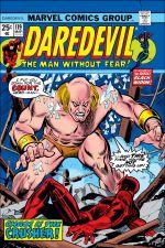 Daredevil (1964) #119 cover
