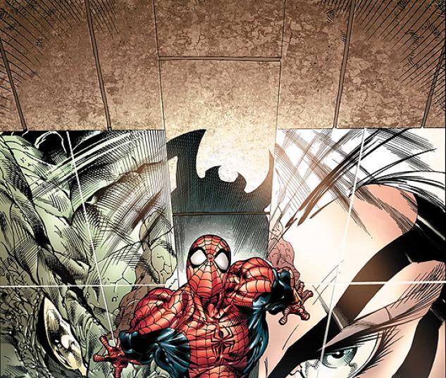 SENSATIONAL SPIDER-MAN (2007) #24 COVER
