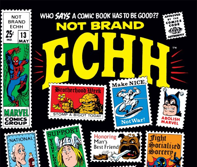 Cover Not Brand Echh #13