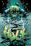 INCREDIBLE HULK (2005) #64 COVER