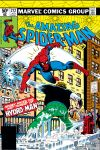 Amazing Spider-Man (1963) #212 Cover